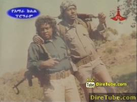 Inspector Bayush Tesfaye's Experience