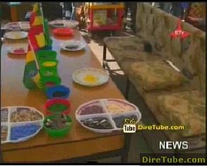 Ethiopian News - 72 micro, small scale enterprises displaying their products, services at Mesqual Sq
