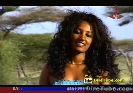 Ethiopian Tradition Music Collection