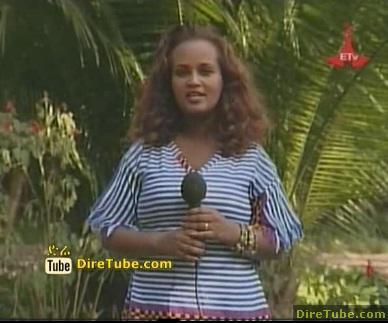 BEST Ethiopian Music Videos - Week 4 - Part 1
