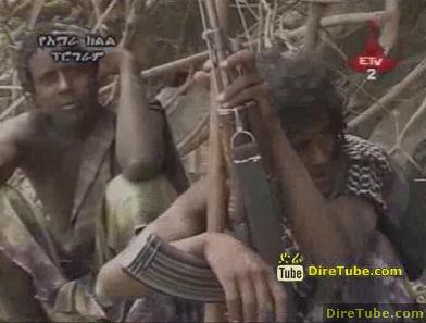 The Amhara and The Afar Relation - Part 1
