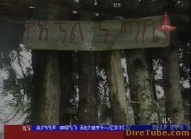 ETV 1PM Full Amharic News - Aug 23,2011
