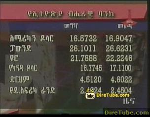 ETV 1PM Full Amharic News - Jan 14, 2011