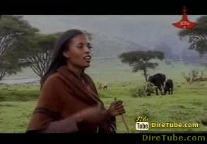 BEST Ethiopian Traditional Music Videos - Part 1