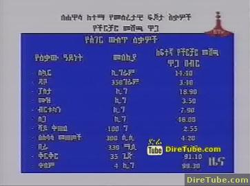 ETV 1PM Full Amharic News - Jan 12, 2010