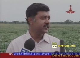 ETV 8PM Full Amharic News - Nov 4, 2011