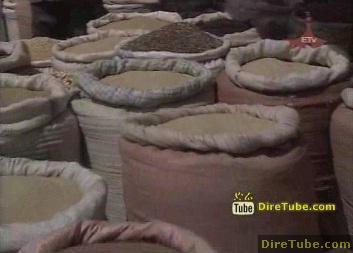 ETV 1PM Full Amharic News - Jan 6, 2010