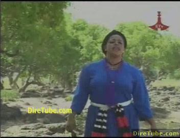Abereregn - Bahilawi
