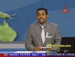 ETV 8PM Full Amharic News - Nov 25, 2011