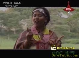 Best Ethiopian Music Video Collection