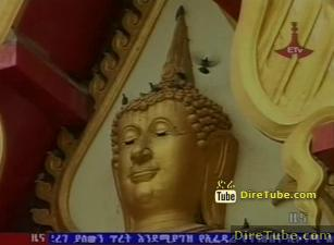 ETV 1PM Full Amharic News - Jun 27,2011