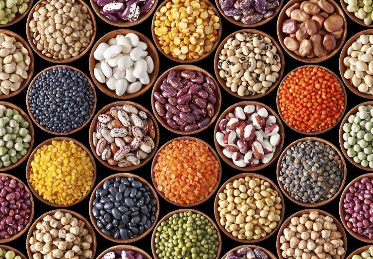 Ethiopian Exporters