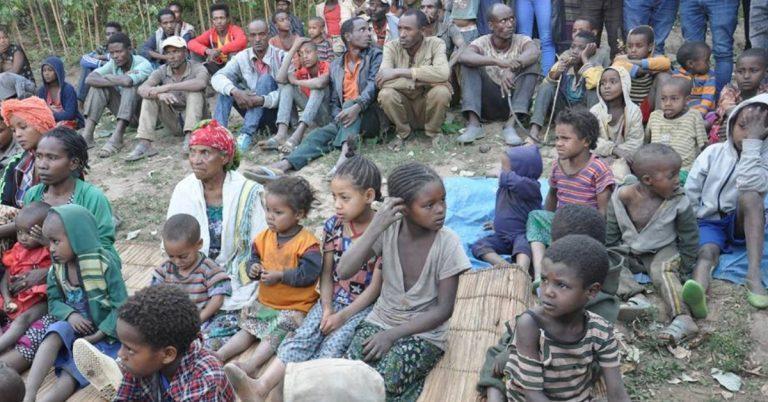 Acute Humanitarian Crisis