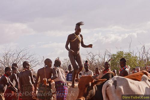 DireTube Explore - Experience the Hamer Jumping of the Bulls Ceremony in Turmi, Ethiopia