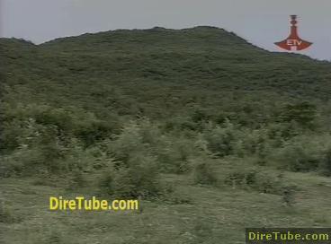 DireTube Explore - The Carbon Project in Ethiopia