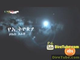 Habesha Weekly - This Week Ethiopian Box Office Movies - Jun 20,2011